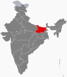 பீகார் எனும் தங்கப் பறவை | கார்த்திக் ஸ்ரீனிவாஸ்